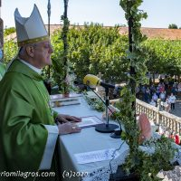 Sr. Obispo de Ourense, 12 h