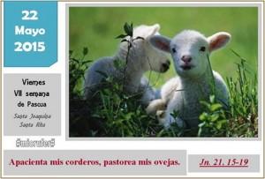 Viernes VII Pascua