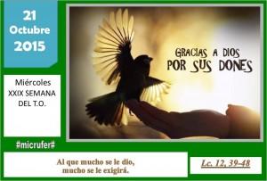 Miércoles XXIX Ordinario