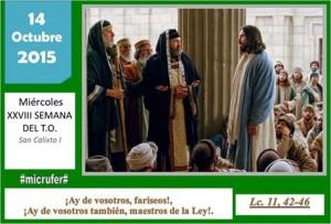 Miércoles XXVIII Ordinario