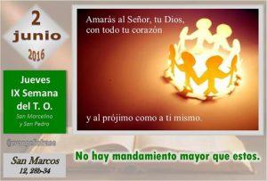 Jueves IX Ordinario