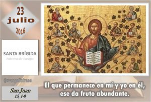 Sábado XVI Ordinario